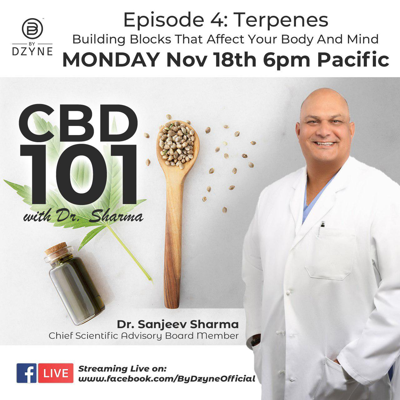 RECAP: Episode 4 – CBD 101 Terpenes: Building Blocks That Affect Your Body And Mind